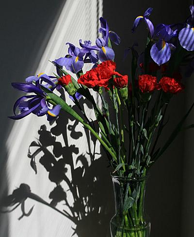 iris_carnations_vase